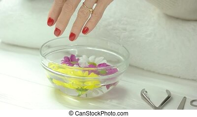 Manicured hands receiving spa treatment. Woman hands with red manicure in spa salon putting flower in glass bowl with water and chrysanthemums. Hands and nails care.