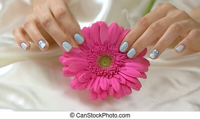 Manicured hands with gerbera, slow motion. Young woman hands...