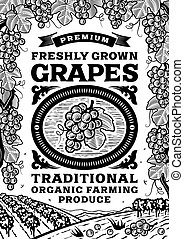 manifesto, bianco, nero, retro, uva