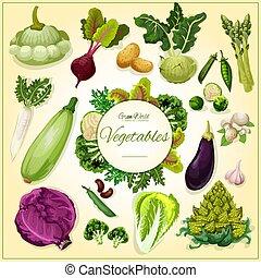 manifesto, fagiolo, verdura, fungo, cartone animato