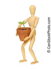 Manikin holding seedling - An artists wooden manikin holding...