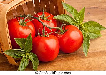 manjericão, cesta, tomates