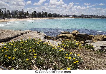 Manly Beach, Sydney NSW, Australia from the rocks