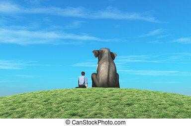 mann, elefant