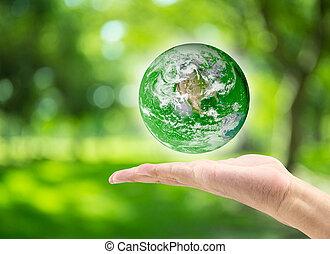 mann, hand holding, planet, auf, verwischt, grün, bokeh, hintergrund, von, baum, natur, :, welt, umwelt, tag, concept:, elemente, von, dieser, bild, möbliert, per, nasa