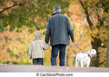 mann, mit, junger, sohn, laufenden hund, durch, herbst, park