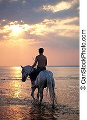 mann, reiten, a, pferd, auf, der, hintergrund, von, der, meer