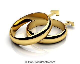 mann, ringe, gay, wedding