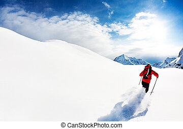 mannelijke , alpen, skiing:, snow., poeder, skier, europe., italiaanse