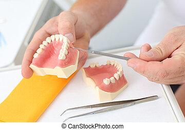 mannelijke , tandarts, het verklaren, dentaal, werpen, in,...