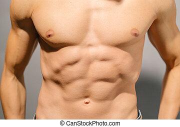 mannelijke , torso, gespierd