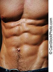 mannelijke , torso, rippling