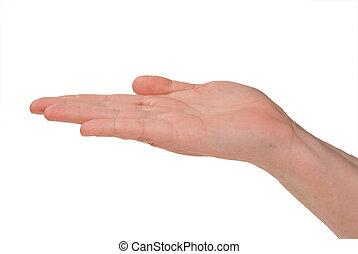 mano abierta, de, un, mujer