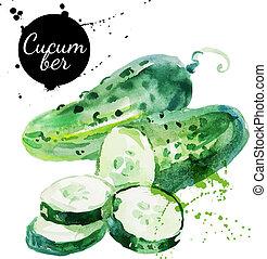 mano, acuarela, cucumber., verde, dibujado, pintura