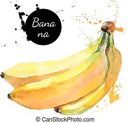 mano, acuarela, fruta, plano de fondo, dibujado, blanco, pintura, plátano