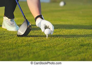 mano, colocación, bola de golf sobre tee