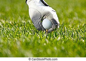 mano, colocación, un, tee, con, pelota de golf