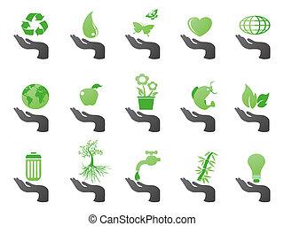 mano, con, verde, eco, iconos