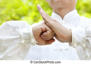 mano, de, maestro, elaboración, gestos, para, kung fu
