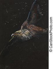 mano, dibujado, águila voladora, pintura al pastel