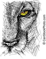 mano, dibujado, bosquejo, de, un, león