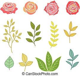 mano, dibujado, botánica, conjunto, de, flores, y, hojas