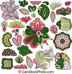 mano, dibujado, floral, vector, elementos