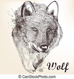 mano, dibujado, retrato, de, lobo