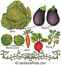 mano, dibujado, vegetal, conjunto, 2