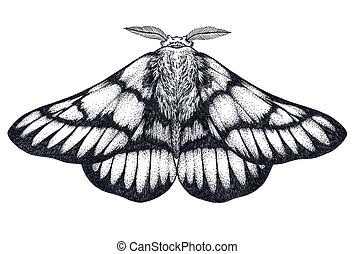 mano, disegnato, farfalla, tattoo., dotwork, tattoo.,...
