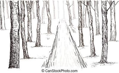 mano, disegno, foresta