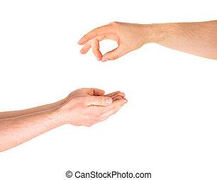 mano, elemosinare, aiuto, gesto, isolato
