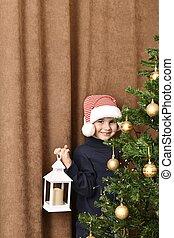 mano, embarrassedly, navidad, niño, el suyo, sonriente, linterna, estantes, vestido, árbol.