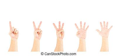 mano, esposizione, numeri, bianco, 1-5, maschio, asiatico, fondo.