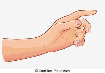 mano femenina, conmovedor, aislado, blanco, plano de fondo