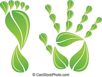 mano, y, pie, con, hojas, vector