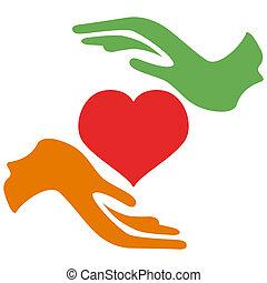 manos, asimiento, corazón