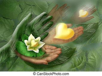 manos, corazón, flor, hoja, bodegón