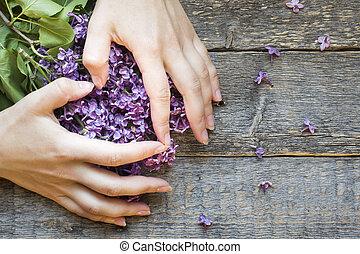 manos, corazón, forma, plano de fondo, de madera, mujeres, lilac., colores, doblado