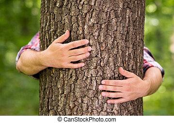 manos, primer plano, el abrazar del árbol, macho, toma, árbol., energía