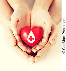 manos, tenencia, corazón rojo, con, donante, señal
