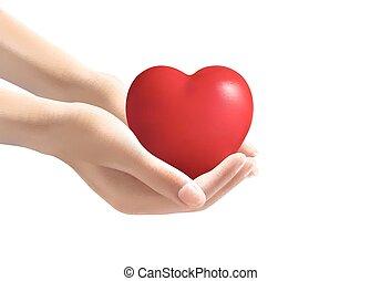 manos, tenencia, un, heart., vector.