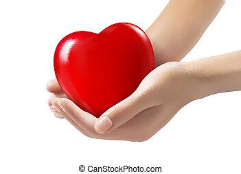 manos, tenencia, un, rojo, heart., vector