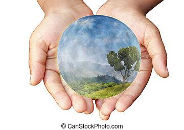 manos, y, earth., concepto, de, ambiental, protection.