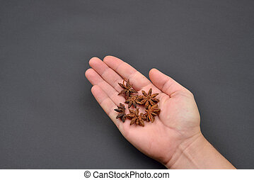 Man's hand holding a pile of anise isolated on black background. Spice. Taste. Cooking. Food and beverage flavoring