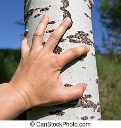 Man's hand on a tree in the nature