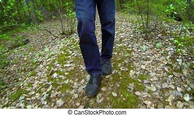 Man's Legs and Feet Walking through the Rainforest