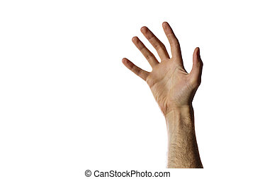 Man`s open hand isolated on a white background
