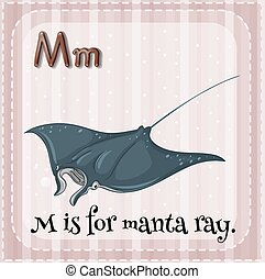 Manta ray - Flashcard alphabet M is for manta ray