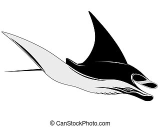 Manta Ray in the form of a tattoo